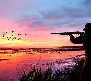 """http://www.euractiv.com/video/use-lead-ammunition-319171 Symposium """"The Sustainable Use of Lead Ammunition in Hunting and Sports Shooting: Facts and Emotions"""" held on 20 October 2015 in Brussels. CLICK ON LINK ABOVE TO VIEW VIDEO AND ACCESS MORE INFORMATION 0 0 votes Article Rating"""